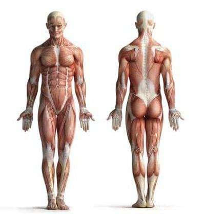 Osteopati 3